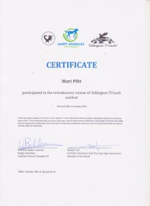 TTouch certificate