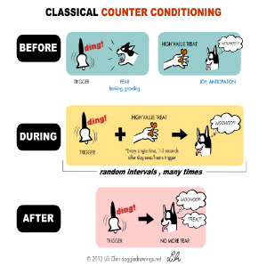 Counterconditioning ja desensitization